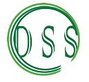 Dexterity Systems Solutions lgoo