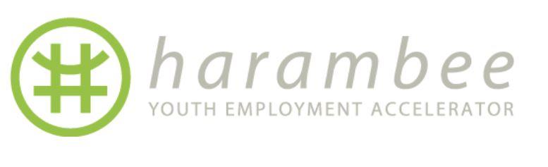 Harambee Academy - WSS Simulation Logo
