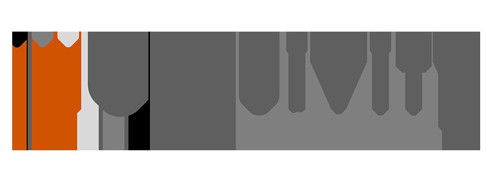Inclusivity Solutions lgoo