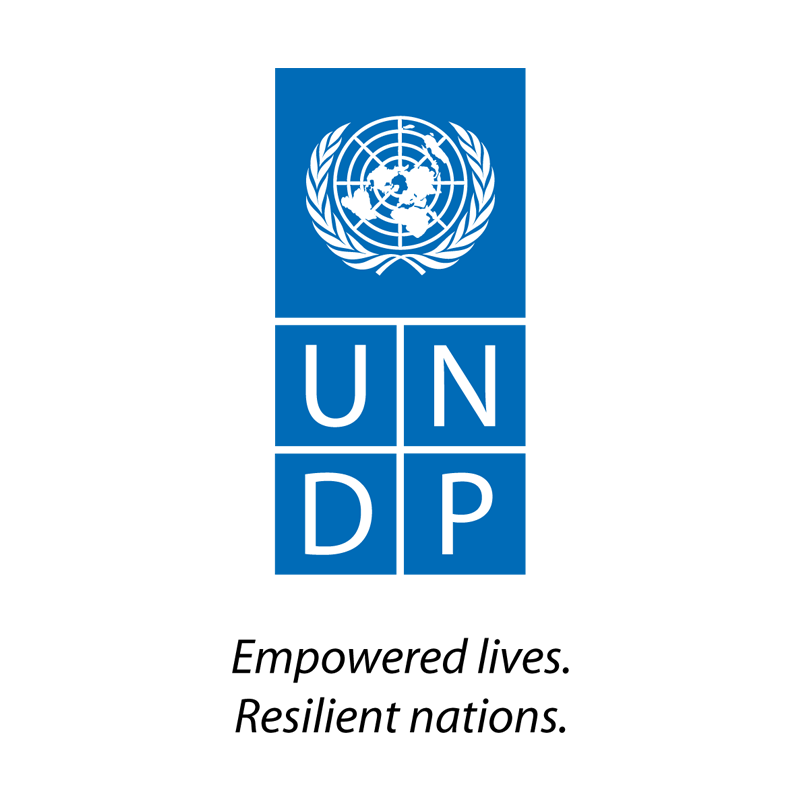 United Nations Development programme (UNDP) lgoo
